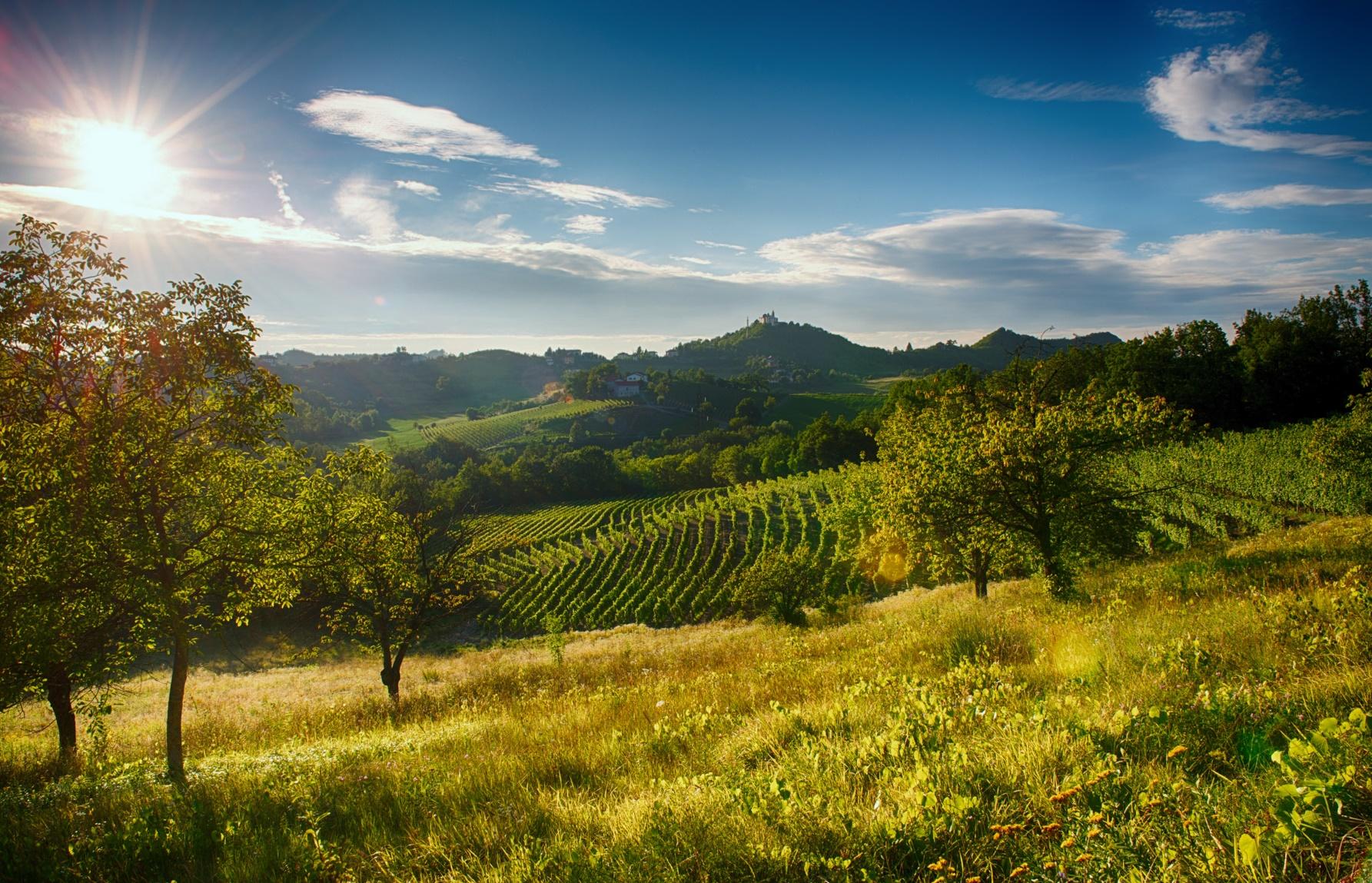 Attraverso Festival: un viaggio nelle terre di mezzo tra Langhe, Roero, Monferrato e Appennino Piemontese .