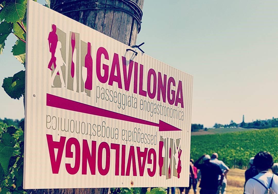 La Gavilonga