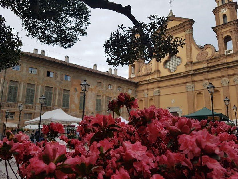 Novinfiore vi aspetta nel centro storico di Novi Ligure