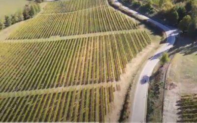 Mototurismo e il Basso Piemonte